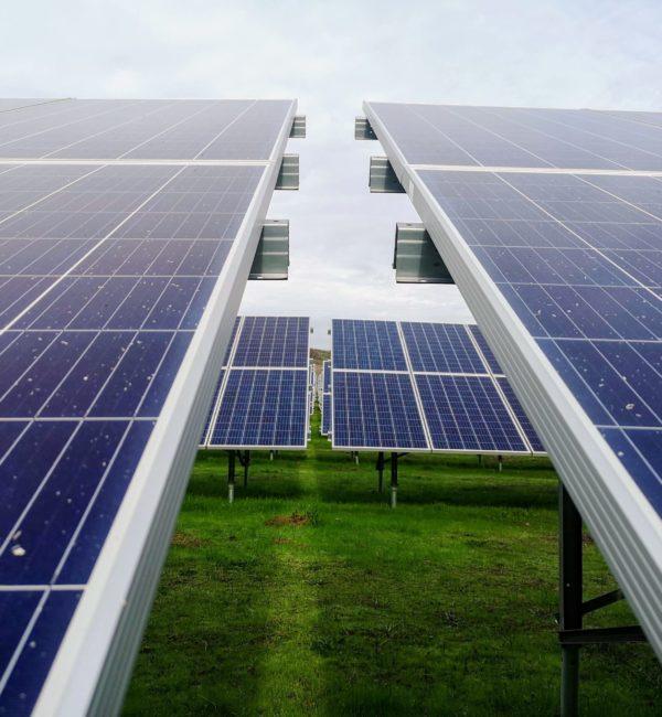 Installation de panneaux photovoltaïques sur terrain
